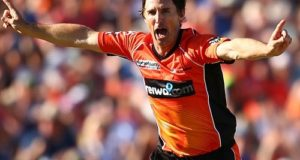 Brad Hogg leaves Perth Scorchers ahead of BBL-06